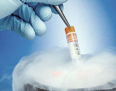 Tüp Bebek Tedavisinde Yumurta Dondurma İşlemi